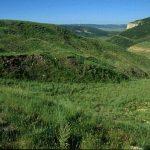 Seneca Mine - Coal Flat No. 2, 10 Years Later (1996) Pic 2