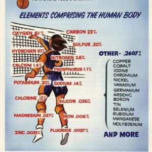 elements_in_human_front