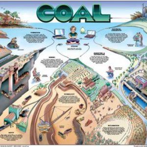 nef_coal-front